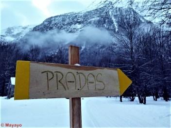esqui nordico pineta (10)