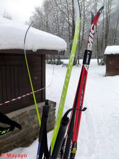 esqui nordico pineta (5)