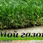 трава для декора и для газона