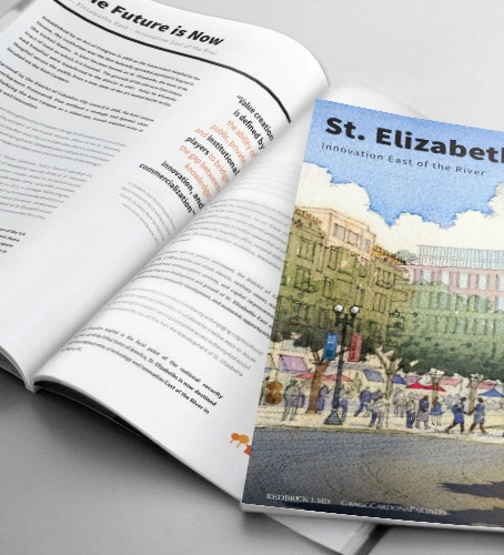 St. Elizabeth East Report