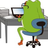 frog-working