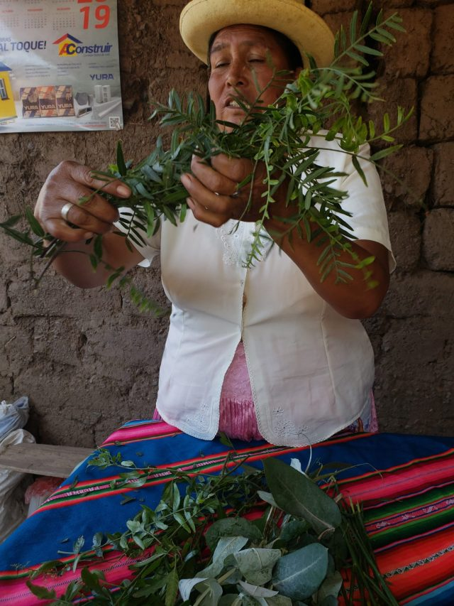 A Window into the Sacred Valley Customs in Media Luna 14 20190530 103751 1