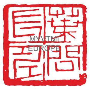 Octava generación IP MAN desde Ving Tsun