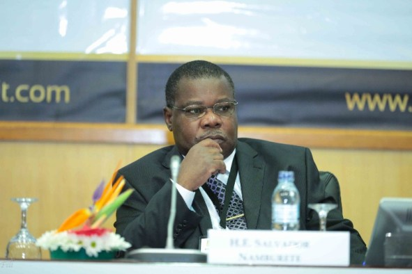 Salvador Namburete, Mozambique Minister of Energy