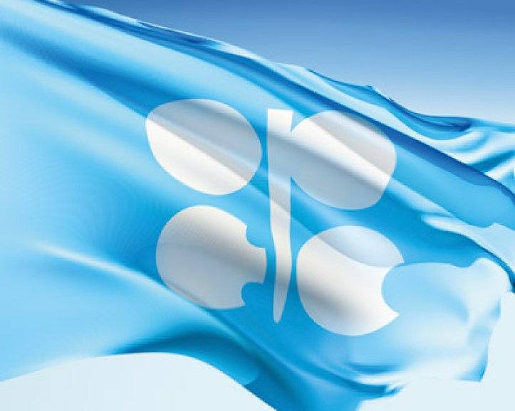 The official flag of the Organization of the Petroleum Exporting Countries.