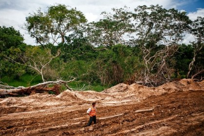 Texas-based Anadarko has cleared this portion of forest in Mozambique for a new onshore drilling site.