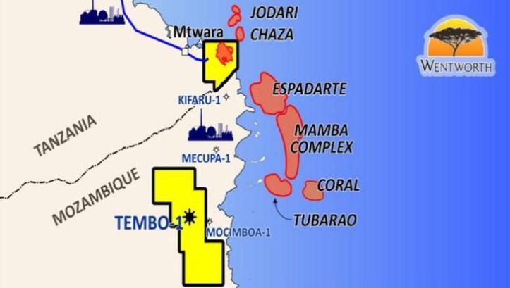 Tembo-1