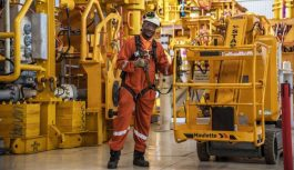 Africa Oil & Gas: Angola launches auction for oil prospecting blocks in 2019
