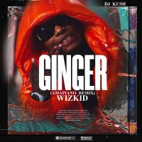 DJ Kush Ft wizkid x Burna Boy - Ginger (Amapiano Remix)