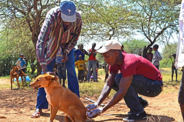 CAMPAIGN MANAGER FOR LAIKIPIA RABIES VACCINATION CAMPAIGN