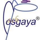 LogoMPCosgaya
