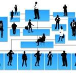 Tu Organización Ideal
