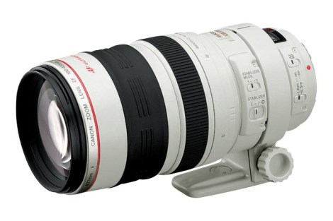 Canon EF 100-400 F4-5.6L IS