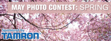 may-2013-contest-featured-image