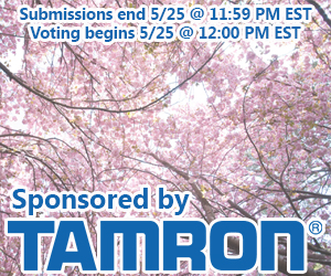 may contest banner
