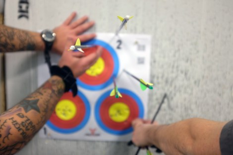 arrows-in-targets
