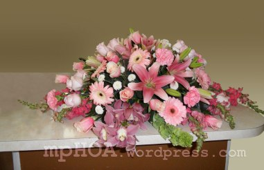 # MPCASK003 — $350.00 — Pink Cymbidium Orchid, Pink Asiatic Lilies, Pink Gerbera Daisies, Pink Roses, Pink Carnations, Pink Snap Dragons, White Pompoms. ~ Approximate size: 18″H x 40″W ~