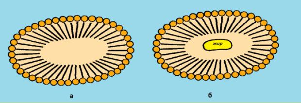 мицеллы мыла