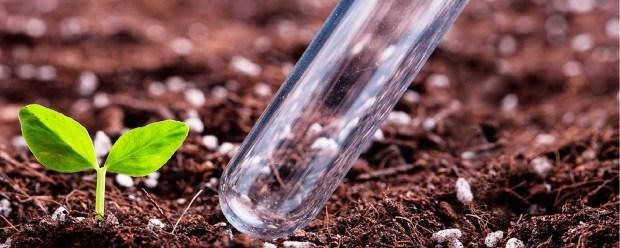 Агрохимический анализ почвы применяется для полноценного развития сельскохозяйственных угодий. Мнение экспертов и особенности процесса.