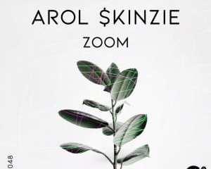 Arol & kinzie Zoom Mp3 Download