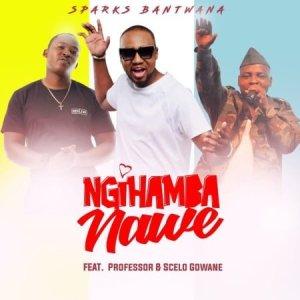 Sparks Bantwana Ngihamba Nawe ft. Professor Scelo Gowane Mposa.co .za  300x300 - Sparks Bantwana – Ngihamba Nawe ft. Professor & Scelo Gowane