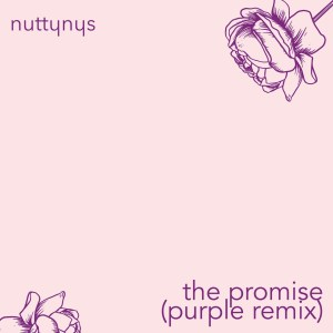Nutty Nys – The Promise (Purple Remix) Mp3 download