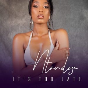 01 Its Too Late feat  Liza Miro mp3 image Mposa.co .za  300x300 - Ntandose – It's Too Late ft. Liza Miro