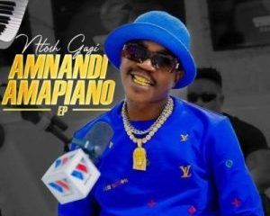 Ntosh Gazi, Amnandi Amapiano, download ,zip, zippyshare, fakaza, EP, datafilehost, album