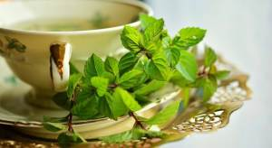 How Much To Drink Green Tea For Weight Loss