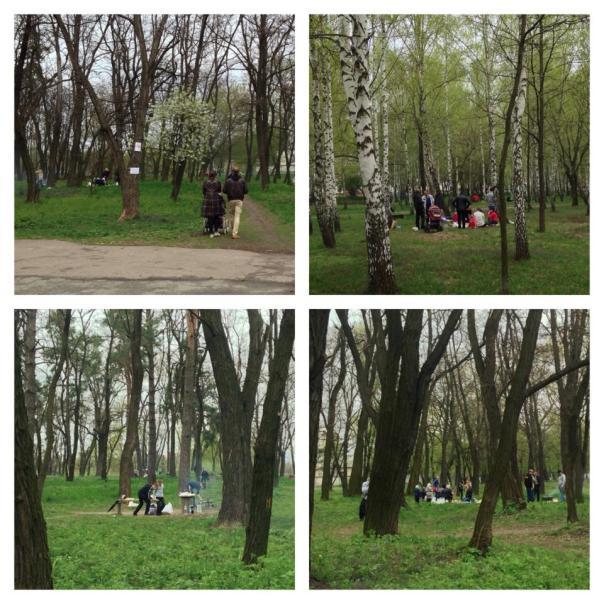 плахов парк4