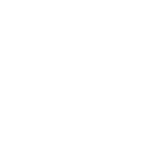 Mr. DJ Logo
