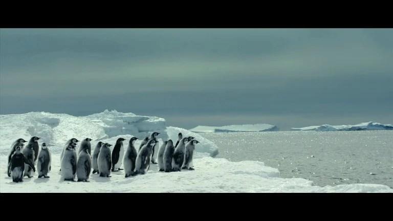 La Marcia Dei Pinguini Il Richiamo Il Trailer Italiano Del
