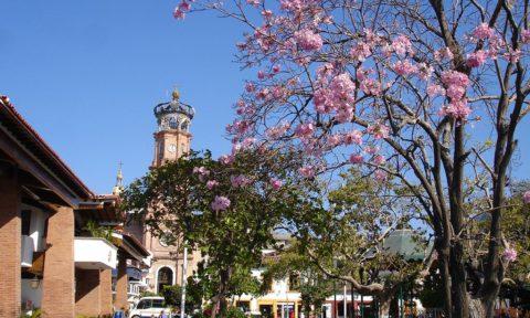 Atractivos en Puerto Vallarta: Plaza de Armas