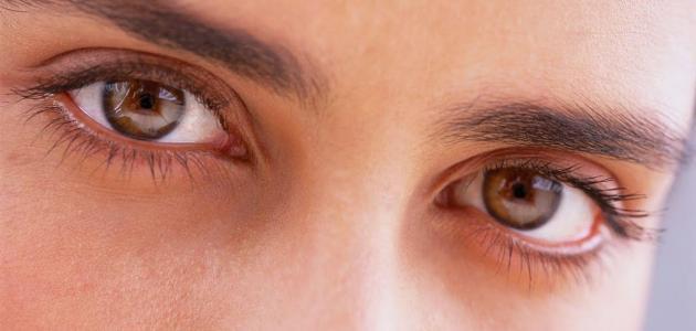 صور عيون عسلية اجمل العيون احلام مراهقات