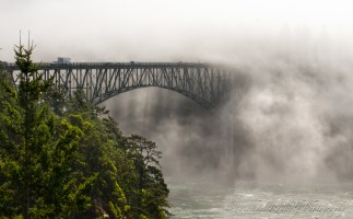 deception pass bridge fog