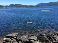 swimming in herring cove, AK