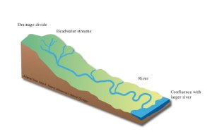 What is a watershed? | Minnesota River Basin Data Center