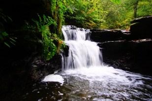 Wyke waterfall 14