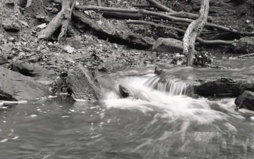 Judy woods 16