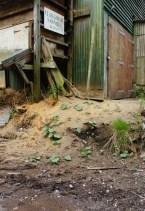 cloughton sawmill 3
