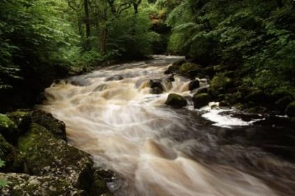 Ingleton waterfall 20