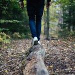 Dépenses caloriques de la marche à pied