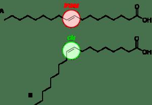 acides-gras-cis-trans