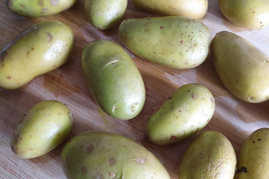Pommes de terre vertes : peut-on les manger ?