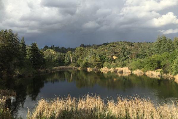Cloudy Franklin Lake