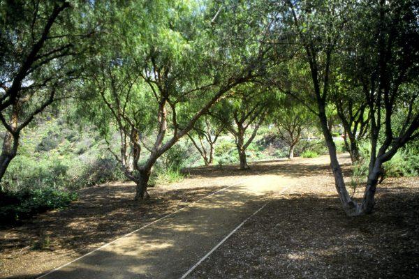 NHP Trail path lg