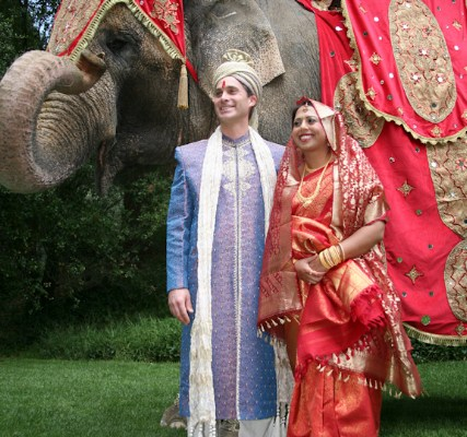 Bollywood Elephant