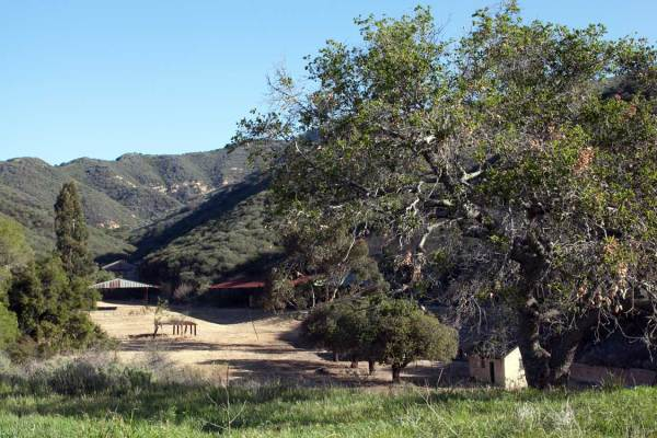 Photo of Cameron Nature Preserve at Puerco Canyon