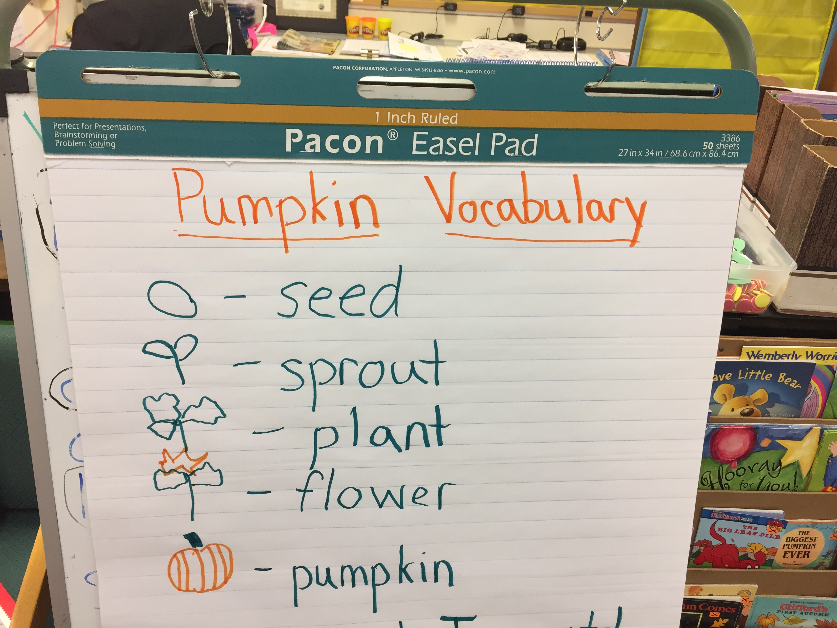 Kindergarten Pumpkin Life Cycle