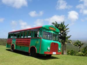 Things to do in Barbados-Bajan-tour-bus-barbados